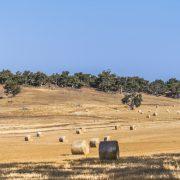 호주에서 집이 가장 싼 지역은 서호주 시골