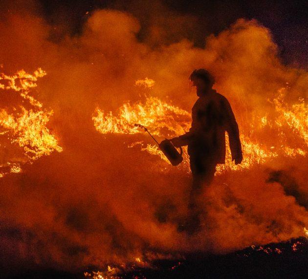 5일부터 QLD-NSW 산불 130건 – 11일부터 기온 완화로 불길 잡혀