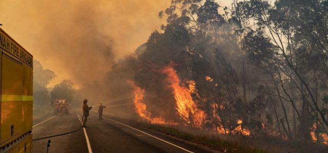 퀸즈랜드 산불 완화됐지만 기상 조건으로 상황 급변 가능
