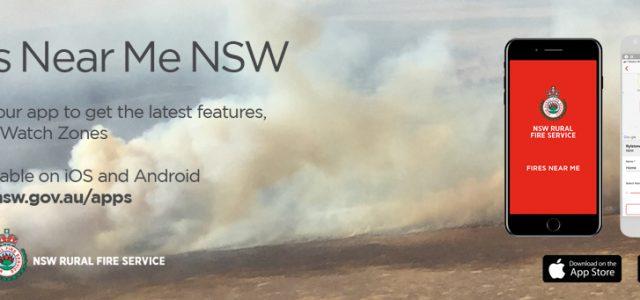 구글 검색으로 되돌아본 2019년 호주
