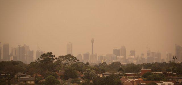 시드니 산불연기로 대기환경 3배 악화