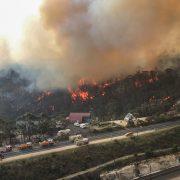 손실 약 1000억 달러 넘을 듯 <br>이번 산불 호주 역대 자연재해 가운데 손실 최대