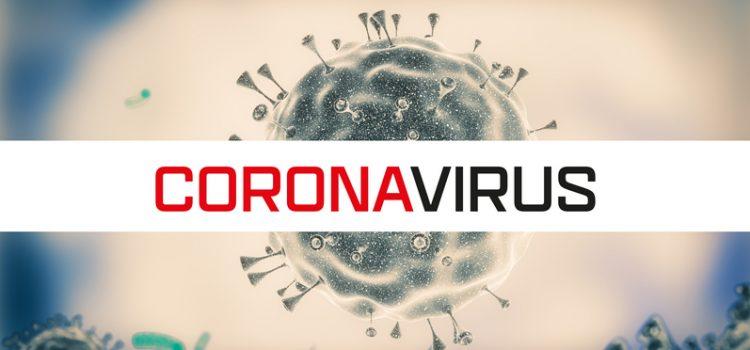 코로나19 바이러스 검사와 권장사항