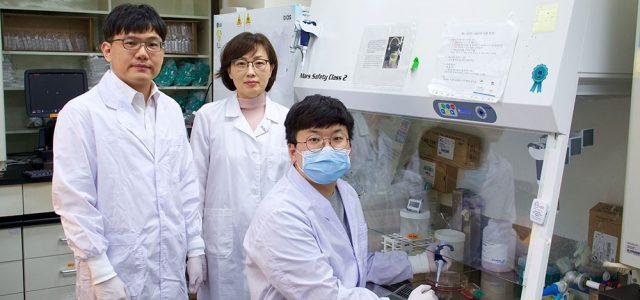 사스코로나바이러스-2 고해상도 유전자 지도 완성