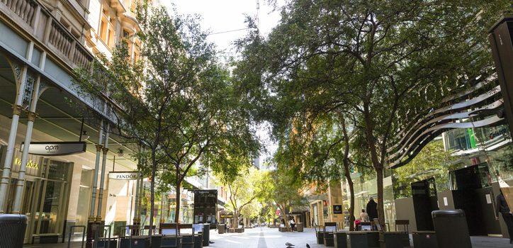 NSW주 15일부터 코로나19 규제 1단계 완화 <br> 2-3단계 일정은 아직