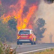 이번 봄 재난적 산불 가능성 낮지만 습한 날씨로 자란 초목으로 위험