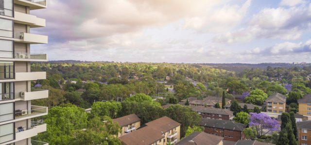 시드니 명문공립학교 학군 주택가격 두자리대 증가: 도메인 학군 보고서
