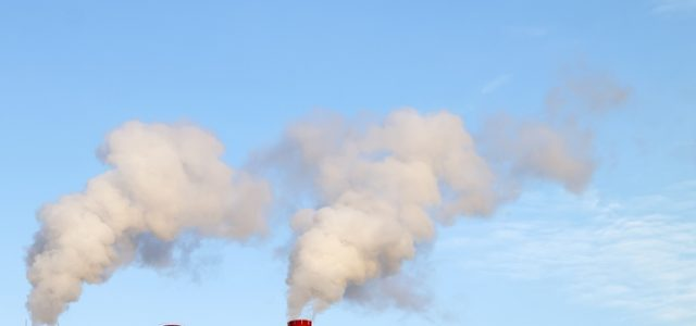 전 세계 이산화탄소 농도, 코로나19에도 계속 상승