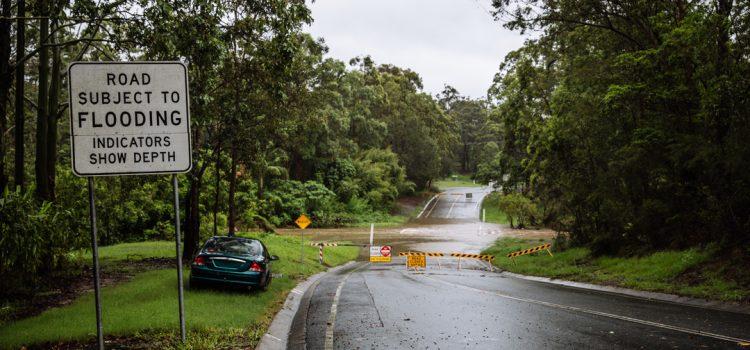 퀸즈랜드 남동부 지역 재난지원금